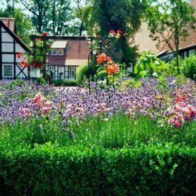 Création d'un jardin fleuri