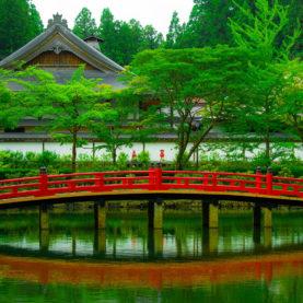 Superbe parc japonais