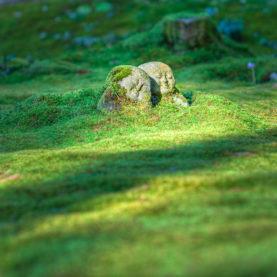 Jardin japonais et ses discrètes statues