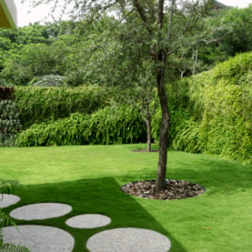 Jardin à la française revisité